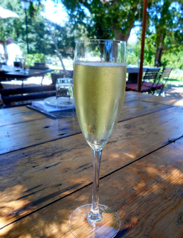 Settling down with a glass of Klein Zalze bubbles