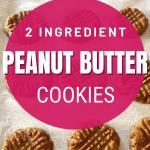 2 ingredient keto cookies