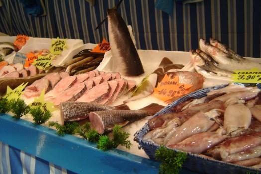 Huge variety of fish