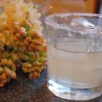 4 Of The Best Margaritas In San Miguel de Allende, Mexico