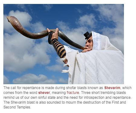 Shofar Shevarim Pic Descrip