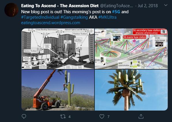 Twitter Suppressed 5G Tweet 2July2018