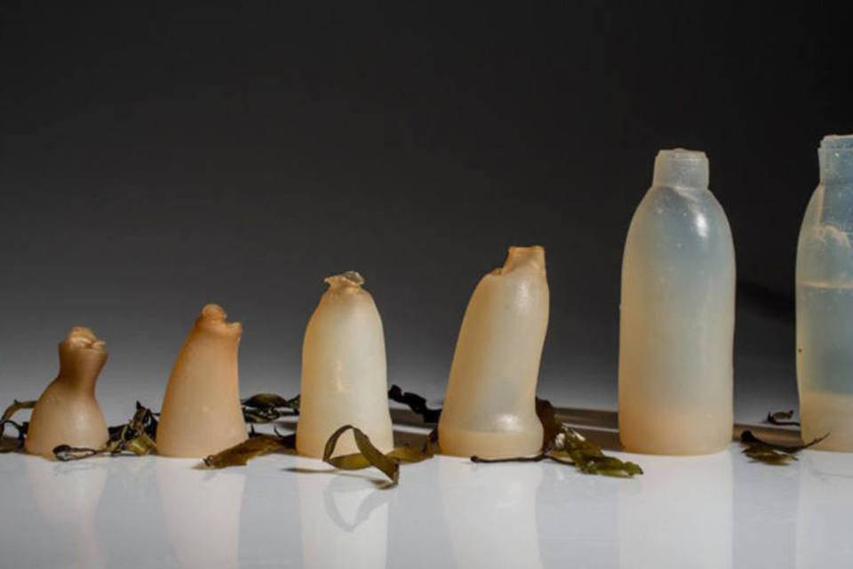 Seaweed bottles will change the way you drink water