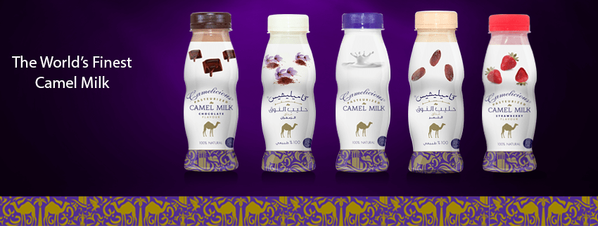 Have you ever thought to consume camel milk products?