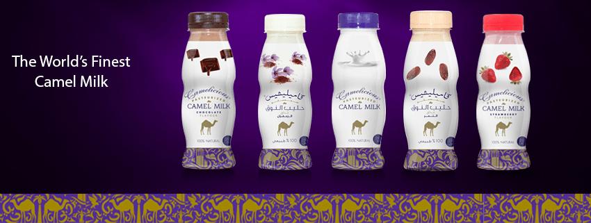 leite de camelo 1