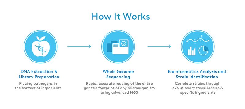 teste rápido de DNA 4