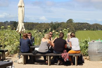 Horseback-winery-tour-mornington-peninsula-5
