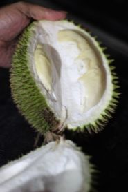 Durian o'clock at the market in Brunei - inside, just before I ate it