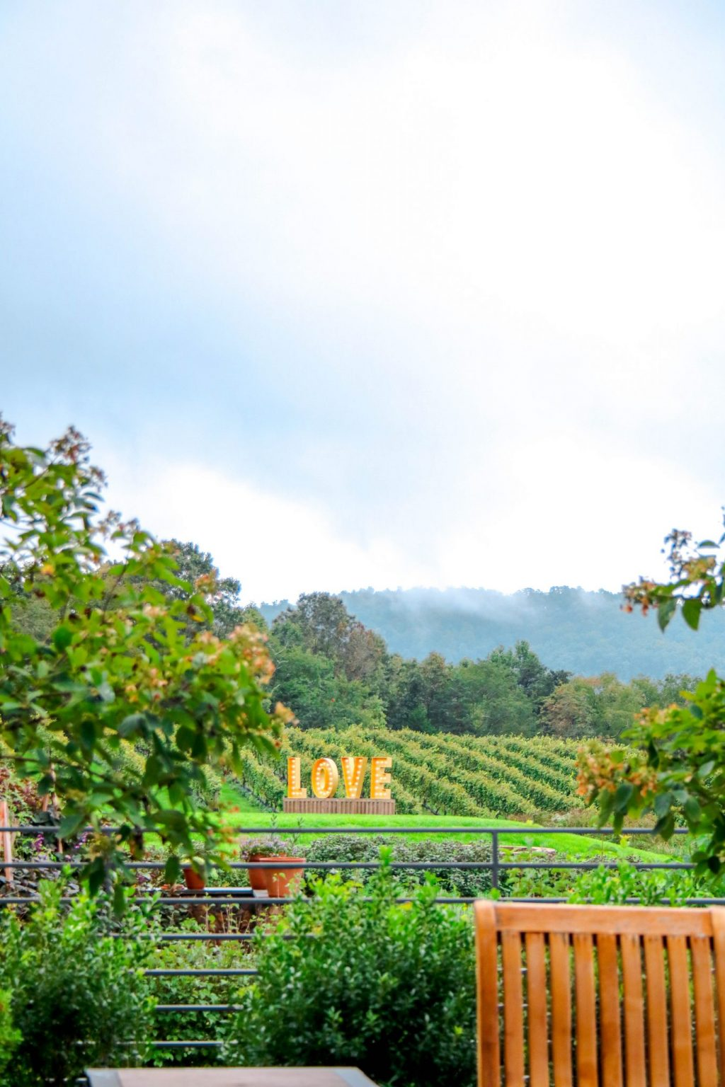 Pippin Hill Winery