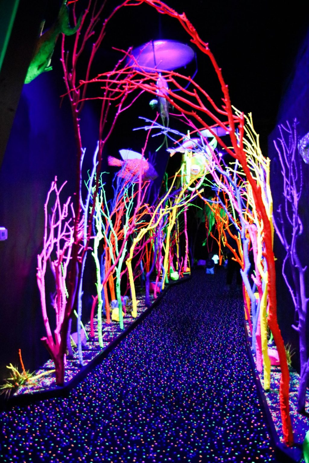 Meow Wolf: An Immersive Experience In Santa Fe