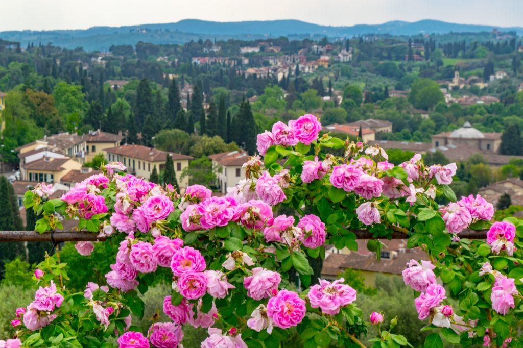 European bucket list trip - road trip through Tuscany Italy