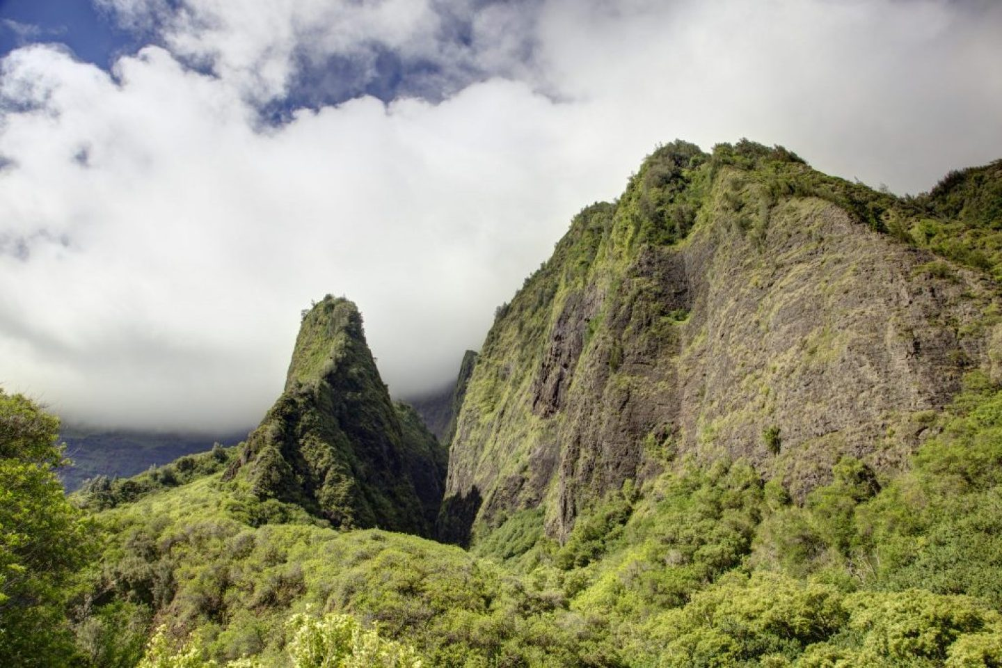 the needle along one of the famous maui hikes