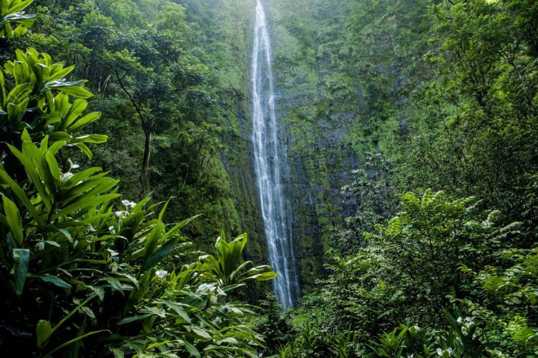 waterfalls alone maui hikes