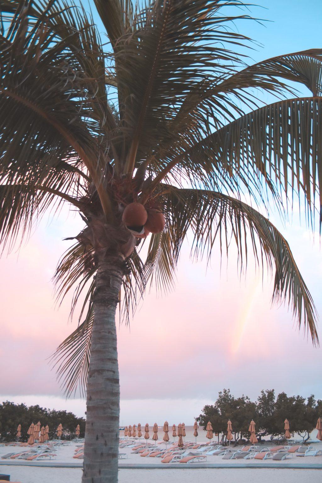 where to stay in aruba - ritz carlton
