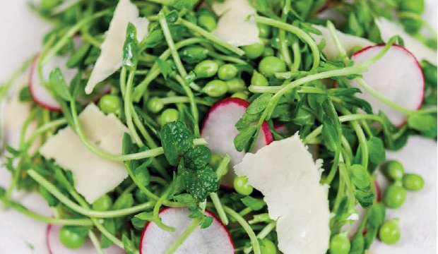 Spring Pea Salad with Shoots & Mint