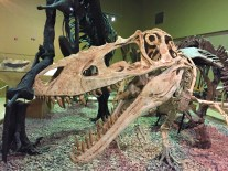dinosaurs-at-thermopolis