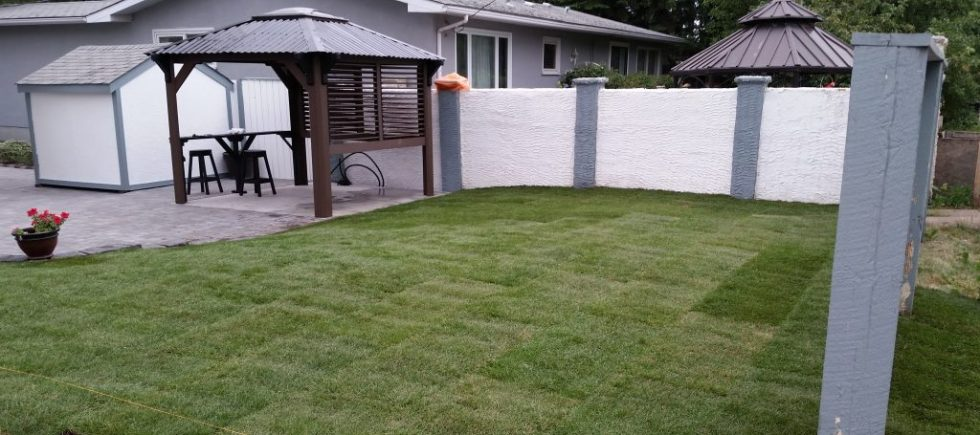 small yard for services page