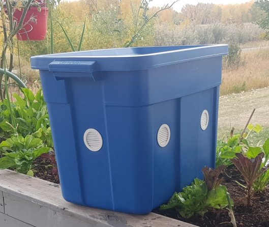 Plastic worm bin for Worm compost (vermicomposting) tips
