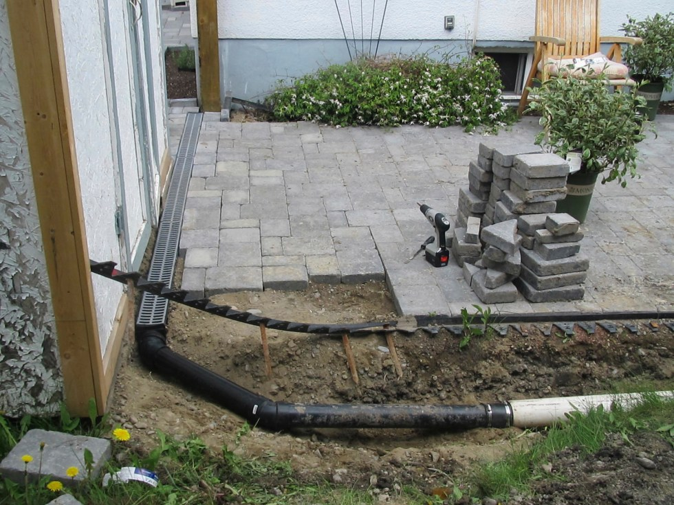 dogwood hedge drainage grate and fill pipe