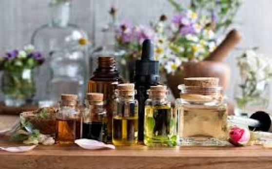 essential oils garden pest sprays