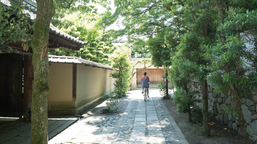 les allées du templeMyôshin-ji