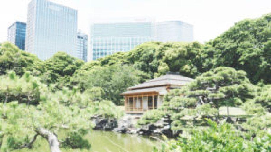 La pavillon du thé au Hamarikyu Garden