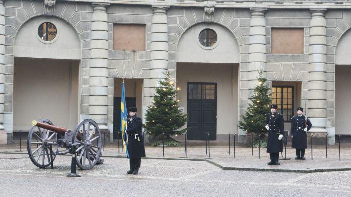 les gardes au palais royal