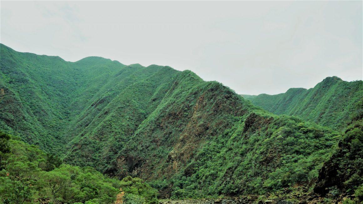 Les montagnes entourant Dumbéa rivière