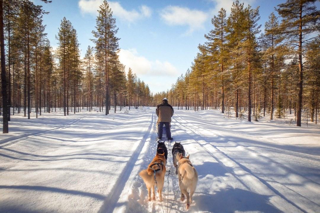 La laponie finlandaise par Vents et voyages