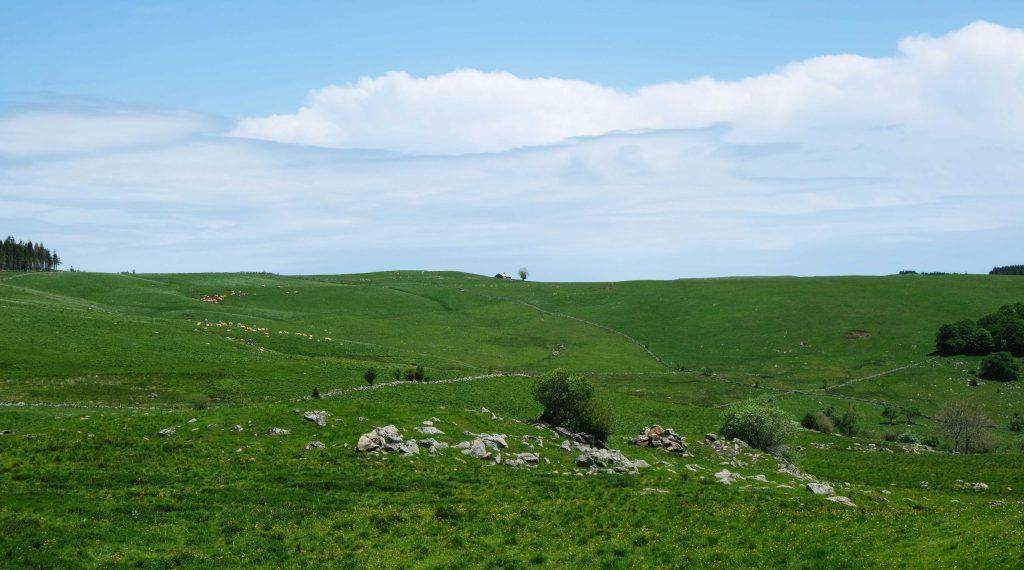 paysages d'aubrac