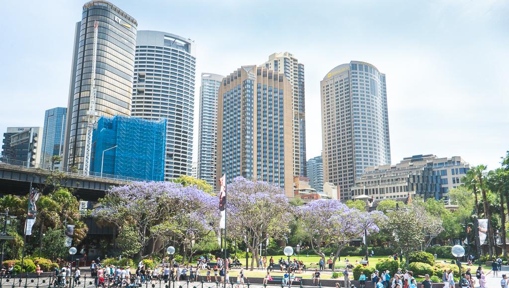 Une ville australienne entre parc et buildings