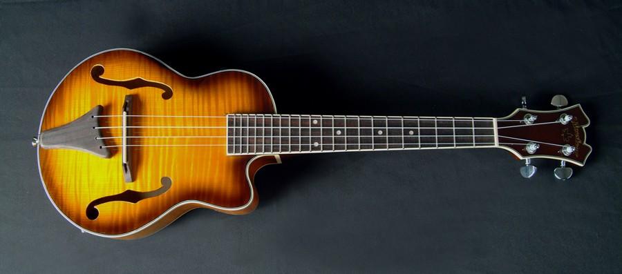Como aprender a tocar ukulele