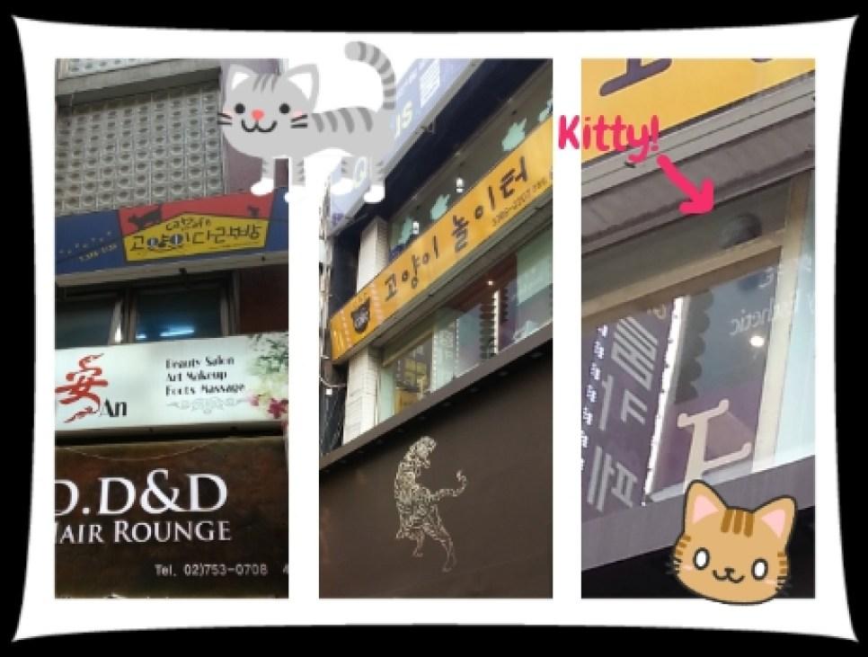 Ah Meow Choco Cat Cafe