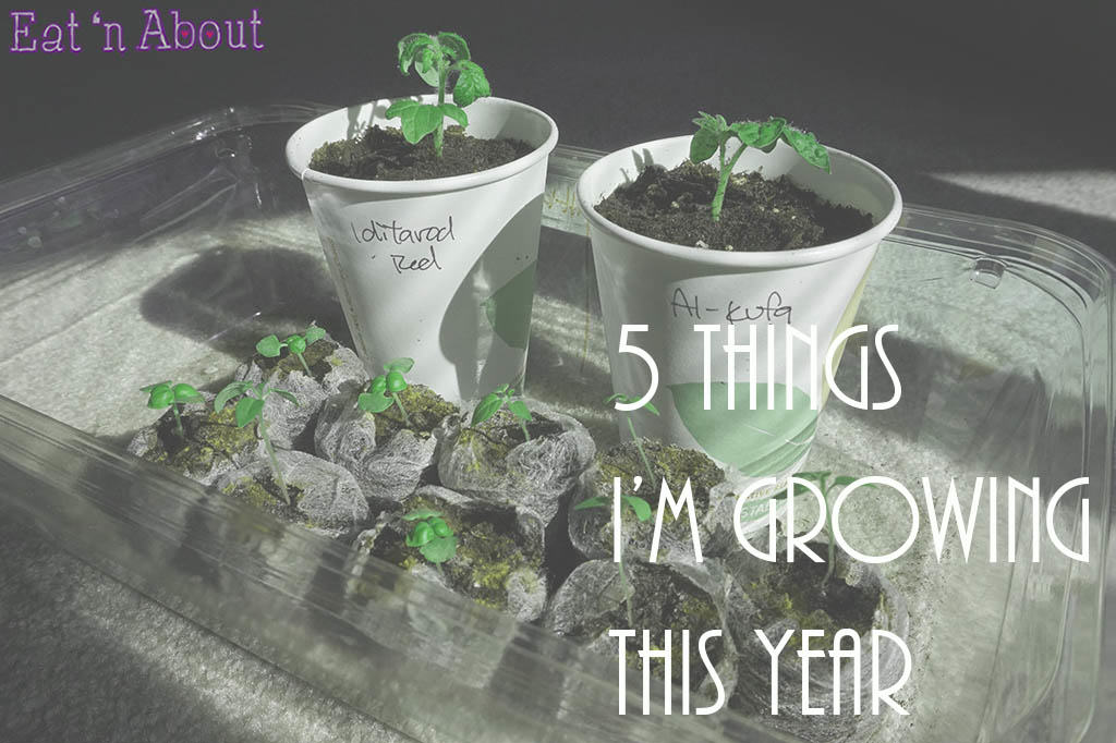 5 Things I'm Growing This Year