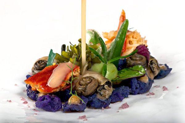 Michelin star dish Annua Northern Spain