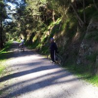 Best Rail Trails In Melbourne