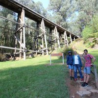 Trestle bridge number 7 to Noojee railway station