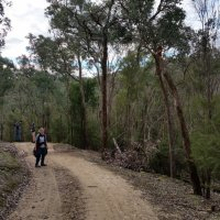 Clifford Dve and Bend of Isles, Warrandyte State Park