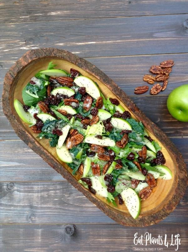 apple candied pecan salad 3