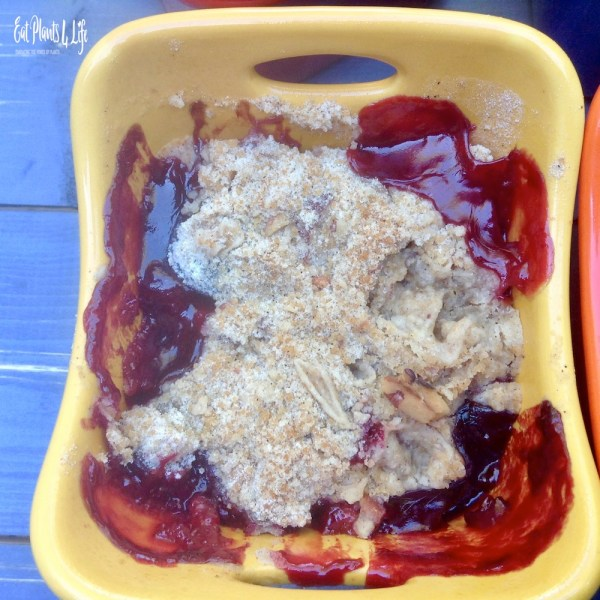 berry apple crisp;4