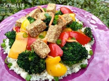 Quick Vegan Dinner Ideas