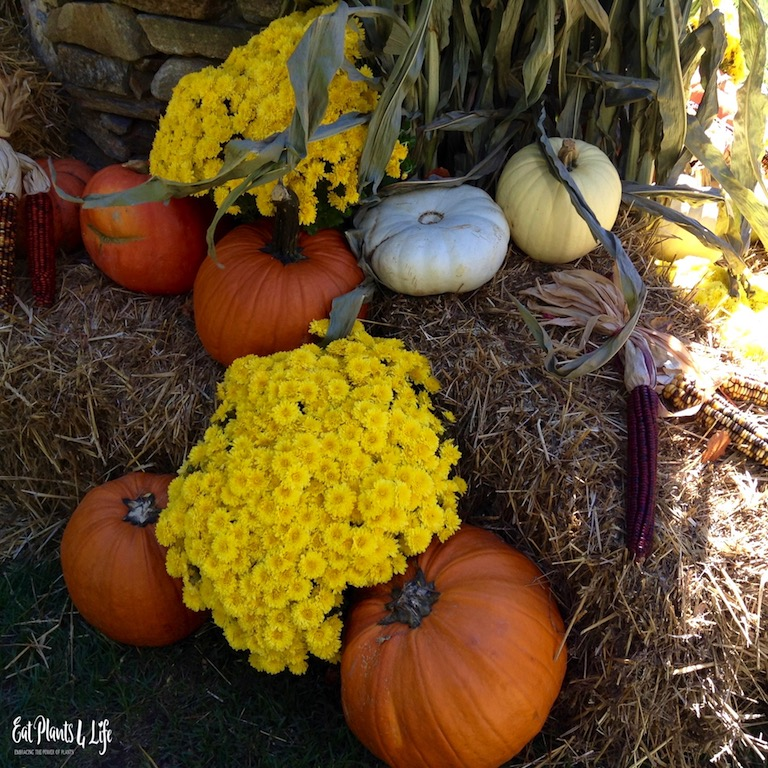 Vegan Thanksgiving: Here Comes Thanksgiving… EatPlants4Life