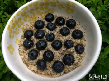 Quick Vegan Breakfast Ideas 2