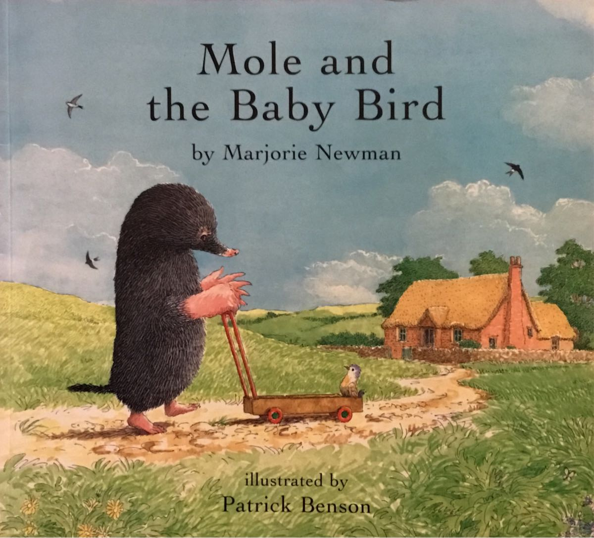 Mole And The Baby Bird Eat Play Read
