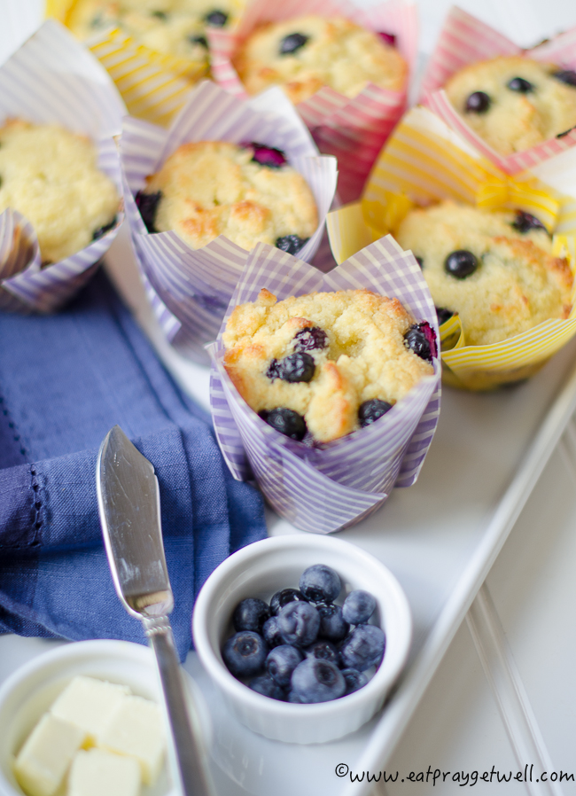 sugar free blueberry muffins-2