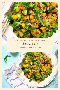 A salad of roasted butternut squash, steamed broccoli, arugula, dried cranberries, and chopped walnuts dressed in a citrus vinaigrette