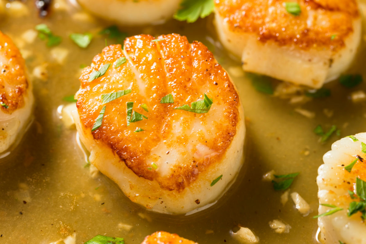 Skillet of Scallops Bruno - scallops sauteed in a lemony, butter and wine sauce
