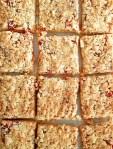 apricot jam bars cut close up