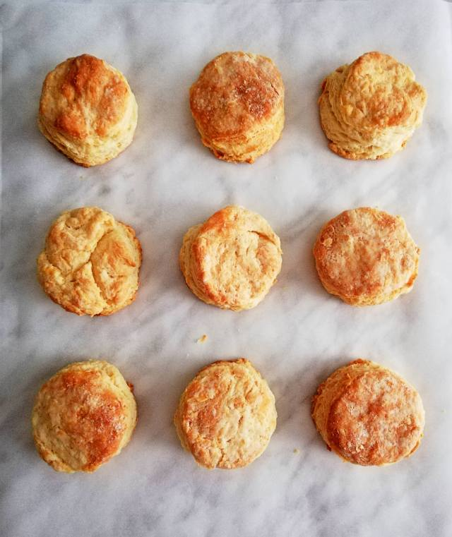 rolled buttermilk biscuits overhead