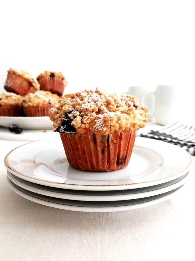 blueberry muffins with streusel topping dusted with powdered sugar in plate close up